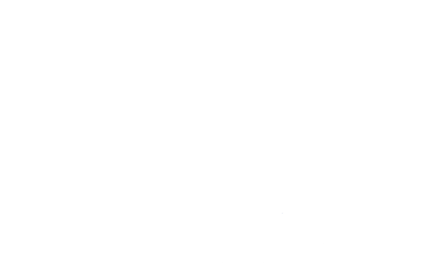 Agenda (Logo NVP)